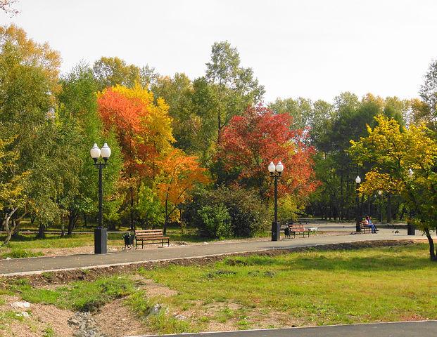 Осенью столько красок!